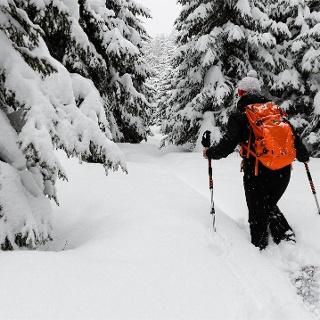 Escursione invernale Val d'Ega