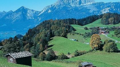 Almwiesen auf dem Weg zum Pinzgerhof