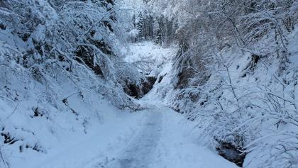 Freudenberg Wanderweg im Schnee