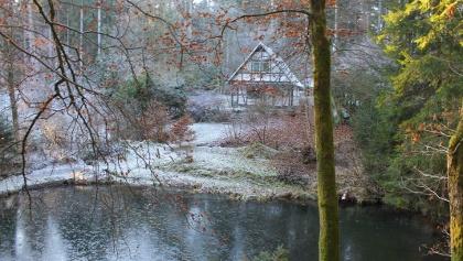 Winterwanderung durch die Freudenberger Natur