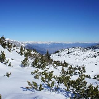 View in direction Val di Non