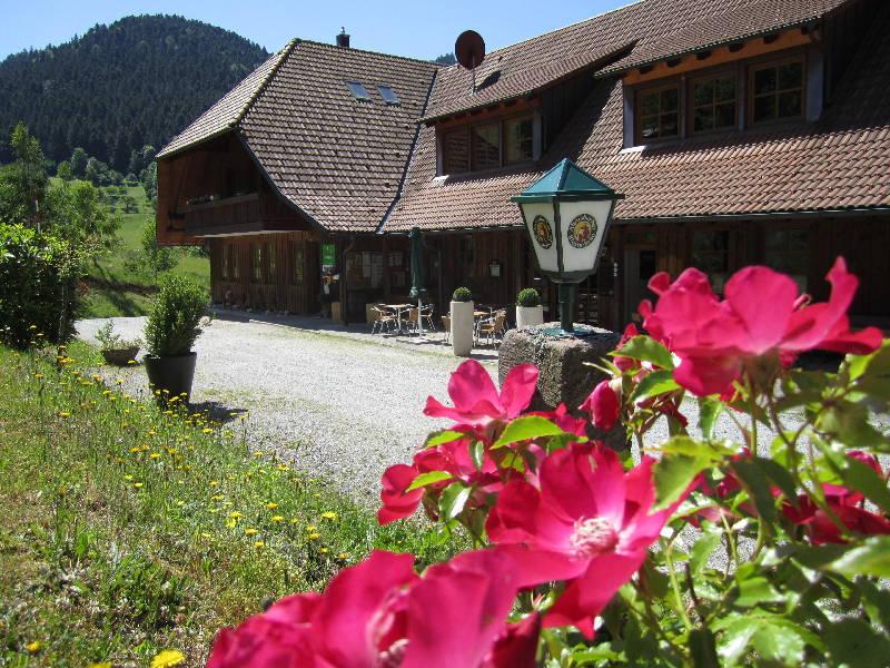 Campingplatz Trendcamping Wolfach