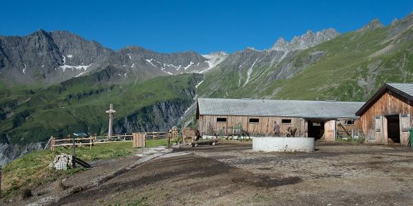 Alp Vasöner-Lasa mit Blick zum Pizol