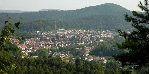 Blick vom Lämmerteichfels auf die Stadt Dahn