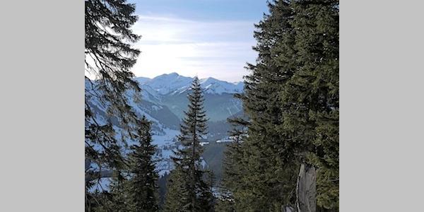 Auf dem Weg zum  Gipfel bietet sich der eine oder andere wunderbare Blick auf Berwang.  foto (c) kinderoutdoor.de