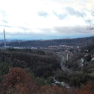 Hádecké lesy - pohled do údolí Svitavy, Obřany