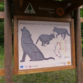 Naturmythenpfad (Foto: Nationalpark Harz)