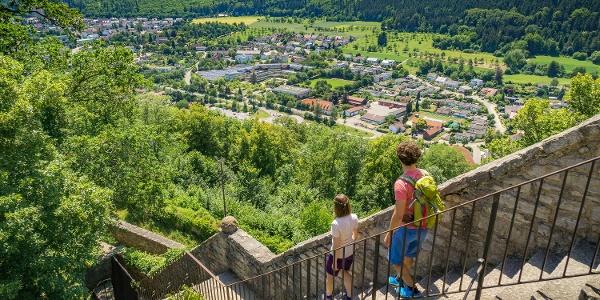 Blick von der Burgruine Hohennagold über die Stadt