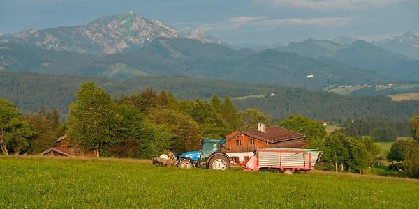 Blick vom Schwarzenberg Weg zu den Chiemgauer Bergen