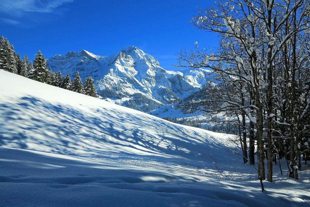 Winterlandschaft bei Adelboden.