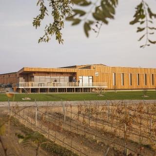 Weingut Allacher Vinum Pannonia