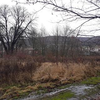 Blick von der ehemaligen Wilhelmsburg zum Adelsberg
