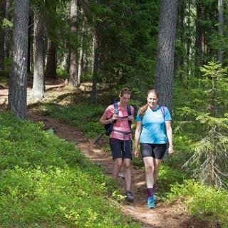 Wanderer in Schwedens schöner Natur