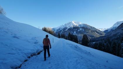 Vom Weg haben wir einen fantastischen Blick in die Lechtaler Alpen.