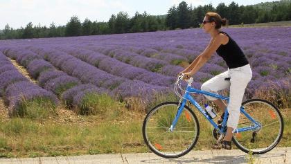 Mit dem Fahrrad über die Hochebene von Sault