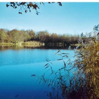 Horrheimer See