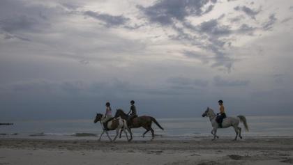 Ein Ausritt entlang des Ostseesaumes in der Abenddämmerung: ein Topabschluss eines Reiterlehrganges in Mecklenburg-Vorpommern