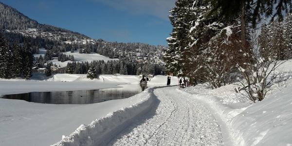 Winterwandern entlang dem Heidsee