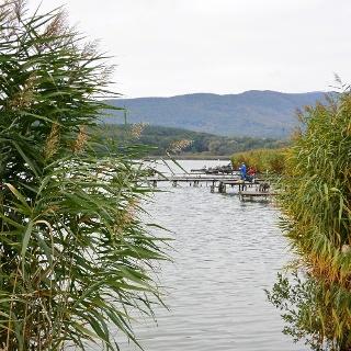 Horgászok a Jenői-tavon