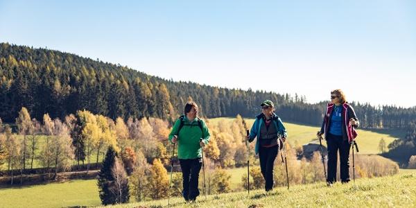 Wanderer am Gurktaler Höhenweg