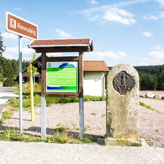 Grenzadler bei Oberhof