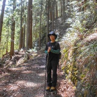 Walking the Kumano Kodo Trail