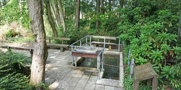 Das klare kalte Wasser aus der Quelle des Poggenbaches durchfließt die Wassertretstelle. Der Ort lädt zum Verweilen ein