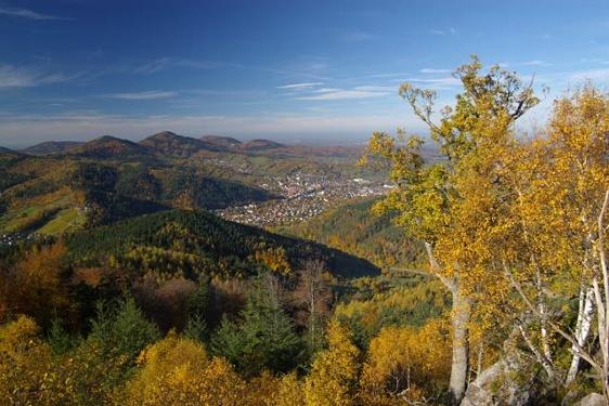 Gernsbacher Runde (Premiumweg)