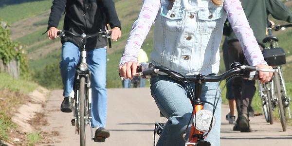 Familie op het fietspad