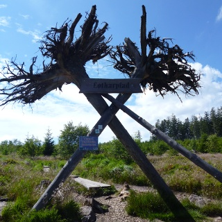 Eingang zum Lotharpfad