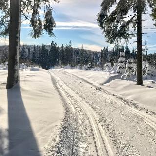 Auf dem Weg zur Skimagistrale