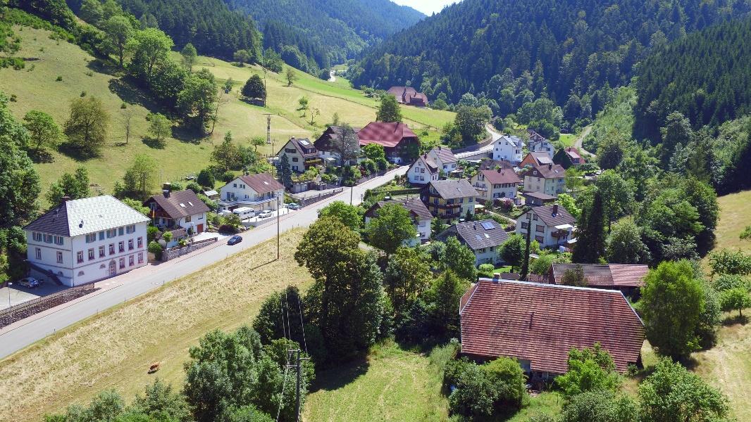 Durch das Rohrenbachtal nach Hornberg