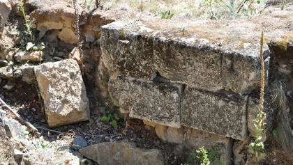 Dacian Fortress of Capalna