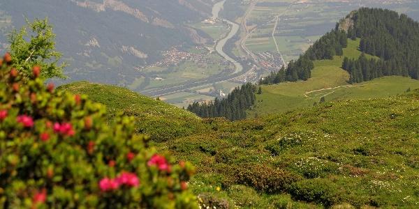 Blick ins Churer Rheintal.