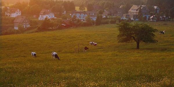 Schanze im Schmallenberger Sauerland