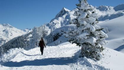 Winterwandern am Spielhahnweg