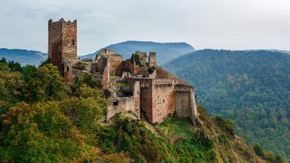 Wandern im Elsass: von Munster bis Ribeauvillé