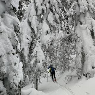 Winter-Zauber