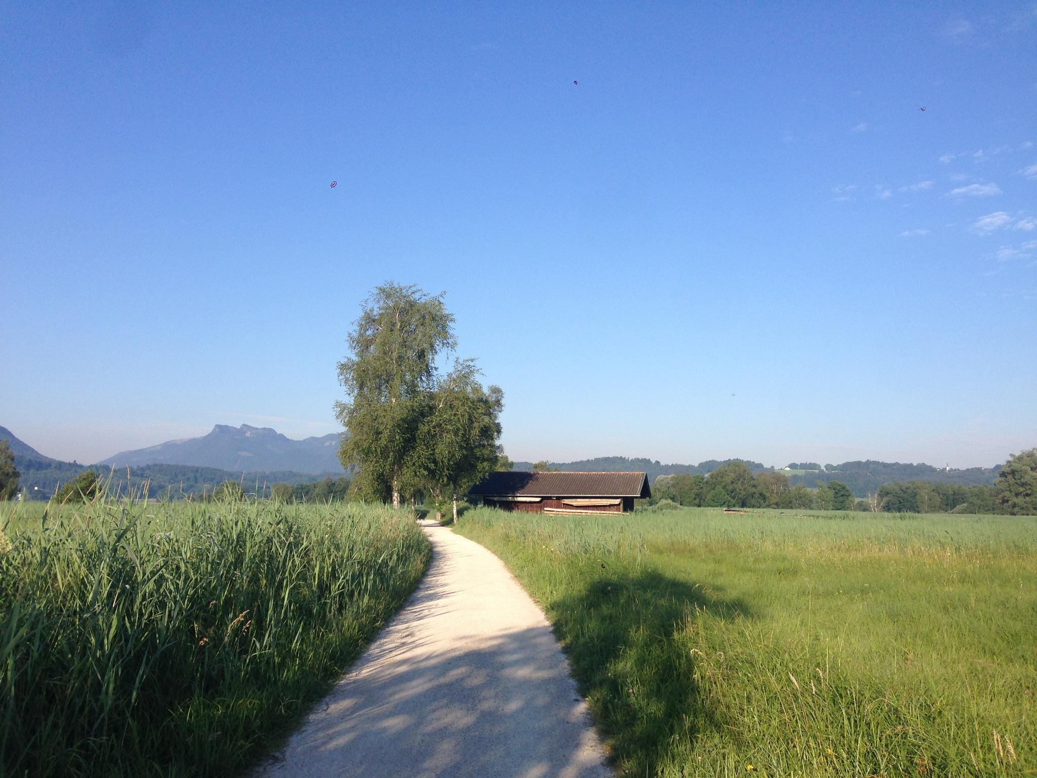 Große Bernauer Joggingrunde - Chiemseerundweg