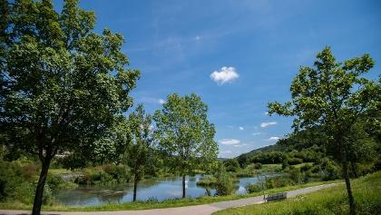 Am idyllischen Stadtweiher in Riedenburg
