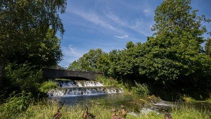 Idylle am Stadtweiher Riedenburg