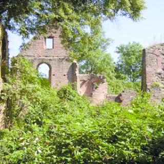 Ruine Kollenburg