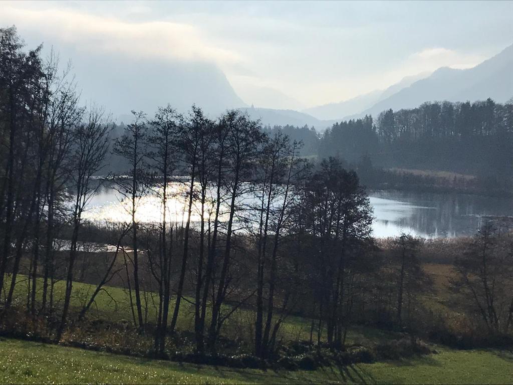 Bärnsee Joggingrunde