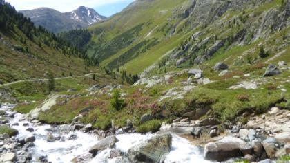Vallember im Val Susauna