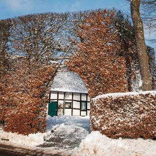 Bis zu 6 Meter hohe, 1 Meter tiefe und bis zu 30 Meter lange Haushecken sind die Attraktion des Heckenweges Höfen.