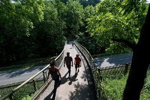 Foto Zeisiggrundbrücke