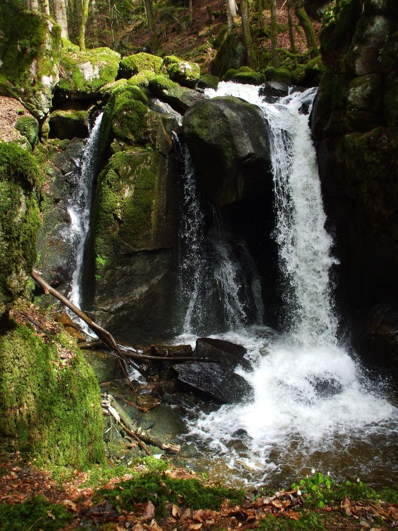 Von Görwihl in die Albschlucht und Höllbachwasserfall