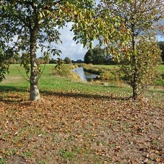 Das weite Areal für Aktivitäten rund um den Dinkelhof.