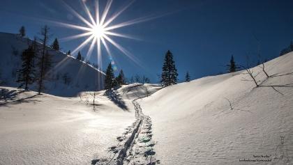 einfache Skitour im freien Gelände