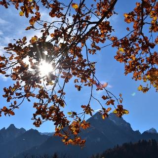 Herbstimpressionen entlang des Weges